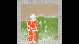 Camper Van Beethoven - Wasted