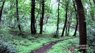 Вело-трасса г.Светловодск(Пробный спуск., 2015-05-31T15:13:41.000Z)