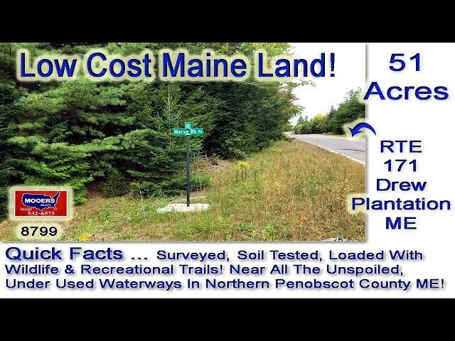 Low Cost Land For Sale In Maine | 51 Acres Drew Plt MOOERS REALTY 8797