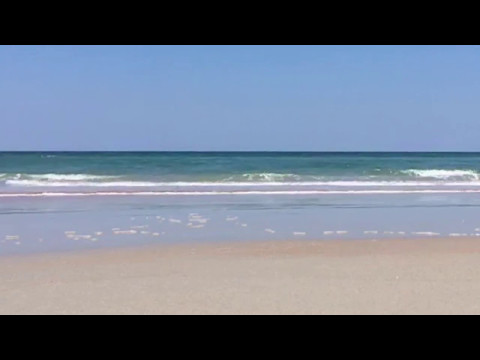 Just 8+ minutes of the beach/Atlantic Ocean (Ormond-by-the-Sea, FL)