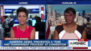 MSNBC's Tamron Hall Calls Out Sanders Campaign Trump ish Behavior