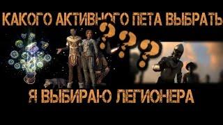 Активный спутник Легионер. Чем он лучше Чернокнижницы? Игра Neverwinter Online