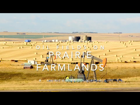 Oil Productions on Wheat Lands - Shocking sights you may have never seen