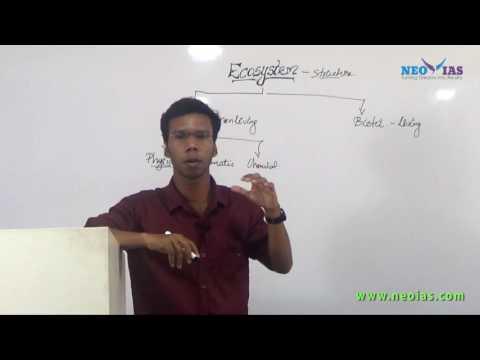 Ecosystem | Environmental Science | NEO IAS