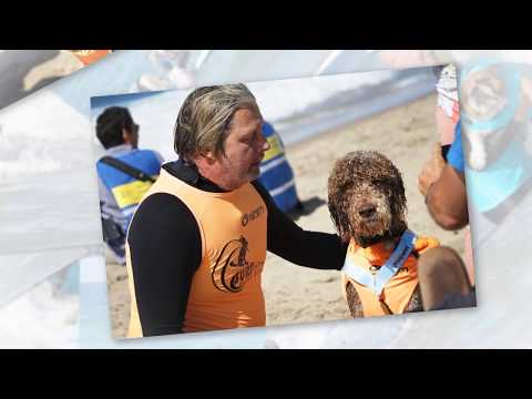 2017 Surf City Surf Dog: Dog Surfing Competition