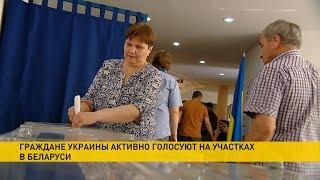 Украинское посольство: голоса на избирательных участках в Минске и Бресте подсчитают вечером