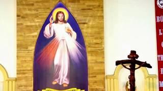 GDTM - Bài giảng Lòng Thương Xót Chúa ngày 30/4/2017 (Lễ 2)