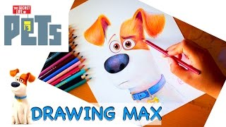 Drawing: MAX | Secret Life Of Pets | BUDGET ART