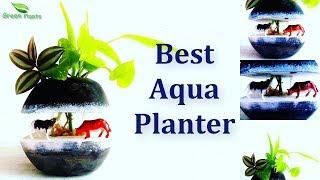 Best Aqua Planter   Cement & Glass Planter for Water Plants   Planter DIY Ideas //GREEN PLANTS
