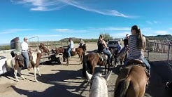 MD Ranch in Arizona: Horseback riding