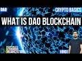 DAO - Decentralized Autonomous Organization — What is a DAO? - Explained - [Hindi/Urdu]