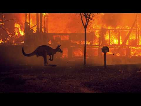 Metal Bands Raise Funds For Australian Wildfire Relief | Metal Injection