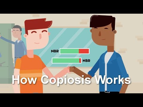 How Copiosis Works AKA How Everything Gets Better in Copiosis