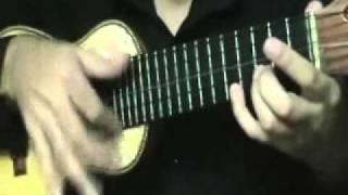 El Condor Pasa - Charango - Fernando Reche