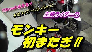 #99 レブルのエンジンガード取り付けと、シビちゃんのお迎え【Rebel250/CB400SF/Monkey】