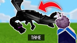 How To Ride Aฑd Tame An Ender dragon