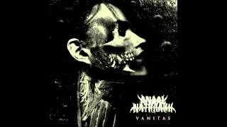 Anaal Nathrakh - You Can