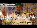 Download Part 2 Hafiz Ali Akbar sindhi speech | Shan e Auliya Allah | Bhej Mashorian Wara Sain | Sindhi Bayan MP3 song and Music Video