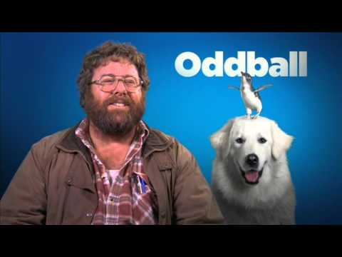 Oddball | Shane Jacobson Interview