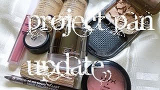 Project Minimalist | Project Pan Update | ThatGallowayGirl Thumbnail