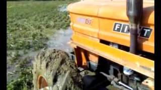 Fiat 850 dt irrigazione soia