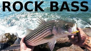 JETTY Fly Fishing for ROCK BASS - Striped Bass / Stripers / Rockbass in the HIGH SUN
