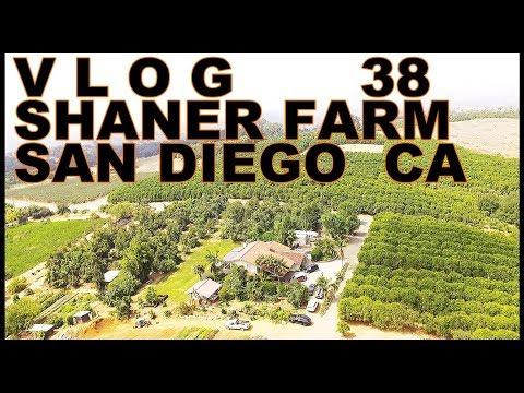 SHANER FARM SAN DIEGO CA