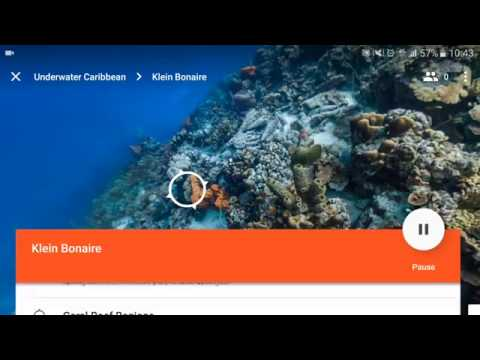 Google Expeditions Tutorial