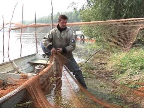 рыбалка неводом лето