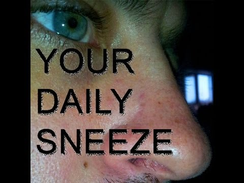Your Daily Sneeze: Day 3