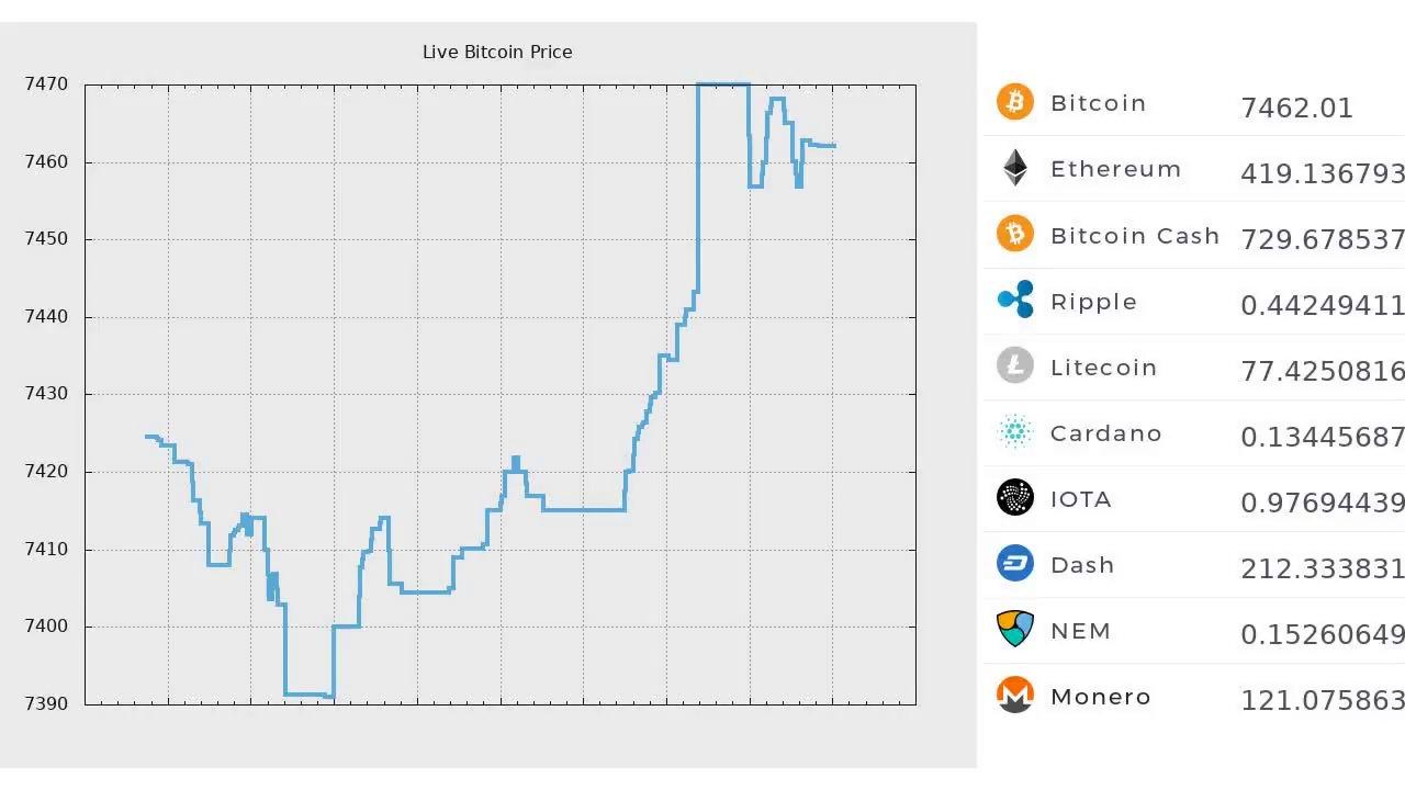 Live Bitcoin Trading Price 24 7