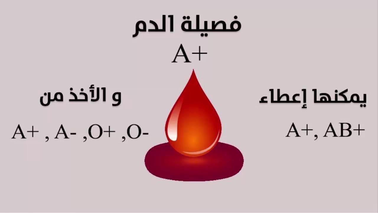 انواع فصائل الدم ومميزاتها وما هى افضل فصيلة والاطعمة المناسبة لكل فصيلة Youtube