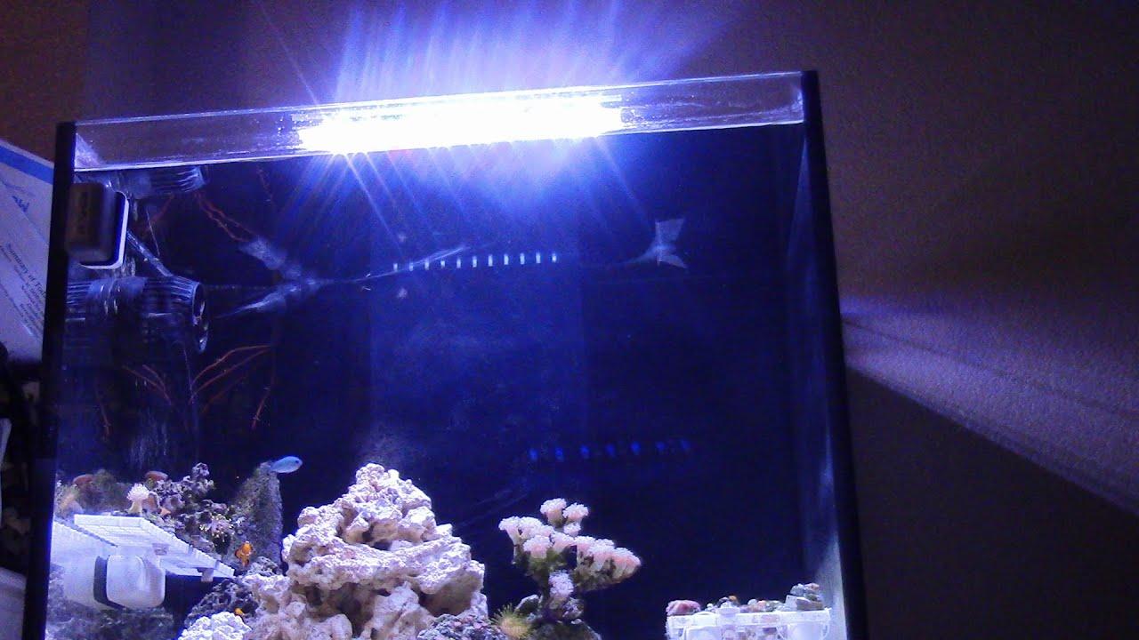 Affordable Led Light Micmol Led Aqua Air 20w Saltwater