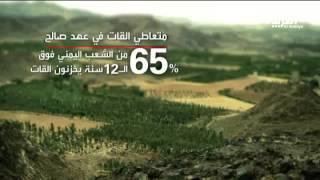 انتعاش زراعة #القات في عهد المخلوع #صالح