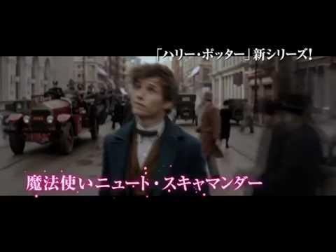 『ファンタスティック・ビーストと魔法使いの旅』オンラインSPOT(ニュート編)
