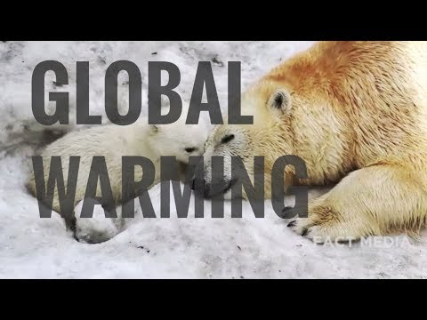 GLOBAL WARMING | CLIMATE CHANGE AND ENVIRONMENT DEGRADATION