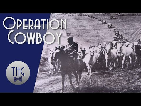 Operation Cowboy And The 1945 Rescue Of Europe's Stolen Horses