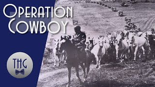 operation-cowboy-and-the-1945-rescue-of-europe-s-stolen-horses