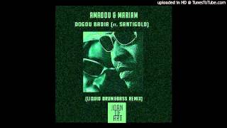Amadou & Mariam ft. Santigold - Dougou Badia (Joan of ART Remix)