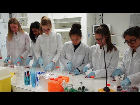 Girls' Day 2018 at Max-Planck-Institute for Brain research (Hessen funzt!)