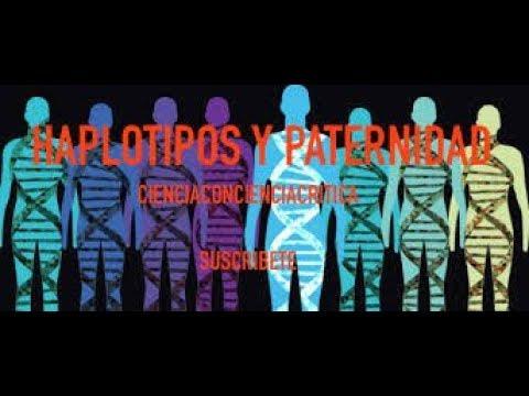 HAPLOTIPOS Y TEST DE PATERNIDAD / CienciaConcienciaCritica C3