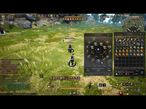 Black Desert Online Accuracy PvP test | Best SubWeapons tested - YouTube