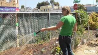 Obsessives - Urban Farming