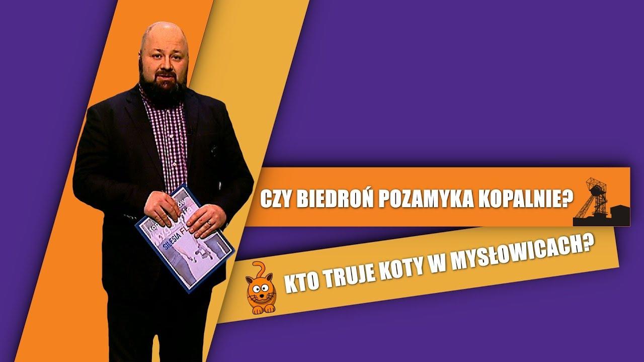 cb02d7bed31c0d Śląskie: Barwy komunikacji miejskiej będą ujednolicone - Ruda Śląska  informacje