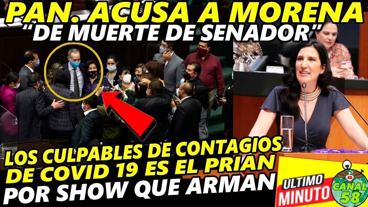 """""""Son Irresponsables, los del PAN ACUSAN a MORENA"""" Monreal adelanta reunión en Senado para COVID- 19"""