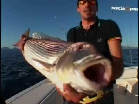 La pesca su un by-pass girante una posizione di testa