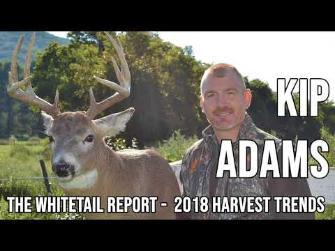 250 KIP ADAMS - The Whitetail Report: 2018 Harvest Trends