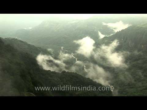 Eco park - Enjoy the green canyons of Cherrapunji in Meghalaya