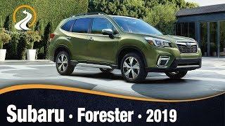 Subaru Forester 2019 | Información Review Español