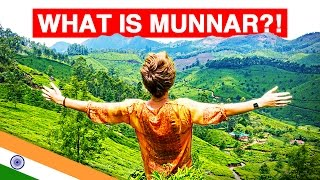 WHAT IS MUNNAR?! | Exploring India's Emerald Tea Plantations